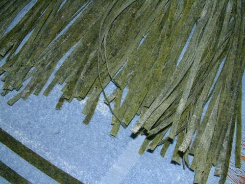 Drying out fresh spinach pasta noodles
